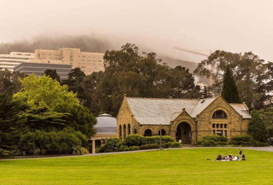 Hippie Hill in Golden Gate Park with thick fog in the background and a group of people picnicking in the grass on a summer day