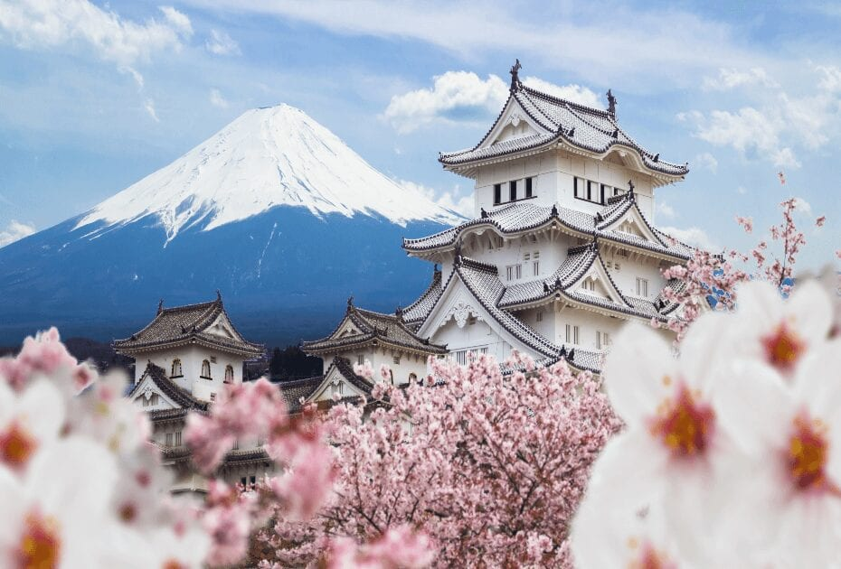 Japan is a great destination for first-time solo travellers - himeji castle full cherry blossom fuji