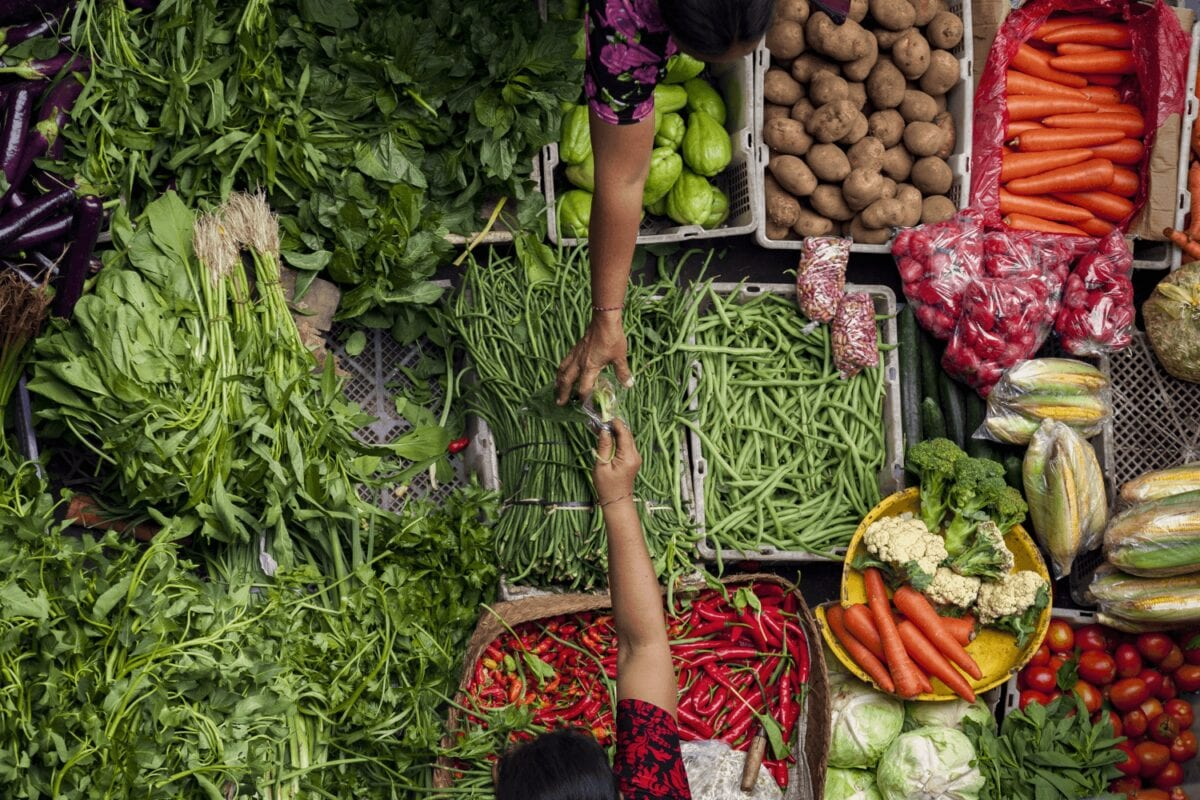 Tips for vegetarians on the road