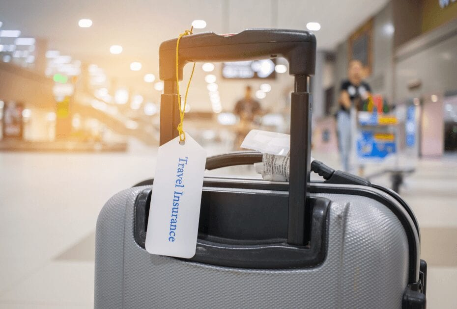 travel insurance tag on suitcase holder