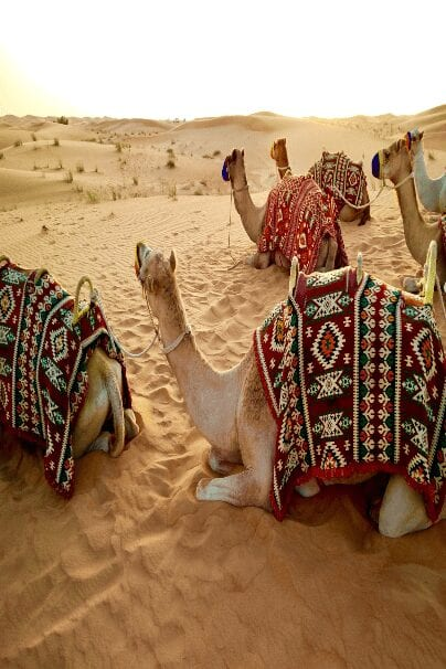 United Arab Emirates: A Perfect Vocation Travel